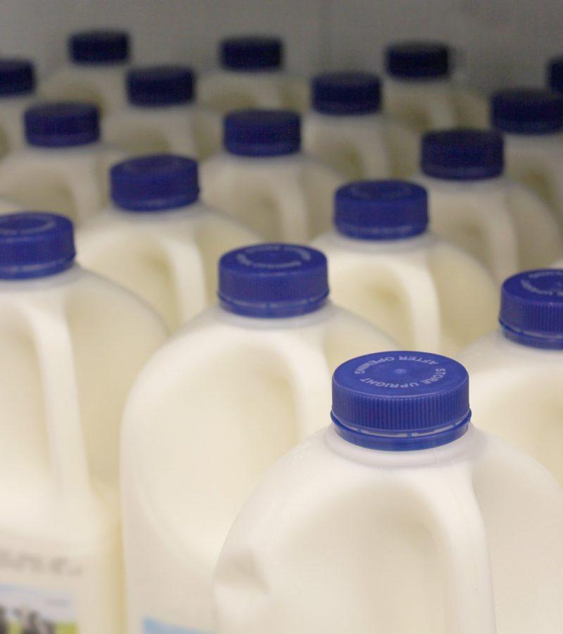 Compostable milk bottles